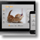 Next In Cat Social Media Toys: The Cat2See