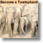 Twitter's 100,000 Twelephants Can Aid 100,000 Elephants