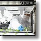 Toshiba Makes Over Mothballed Computer Factory Into An Enormous New Factory Farm