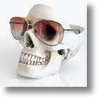 Don't Lose Your Head - The Skull Tidy Organizer