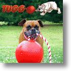 New Tug-O-War Toy For Dogs: Tuggo™