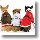 Score A Goal! World Cup Soccer Track Jackets For &#039;World Pups&#039;