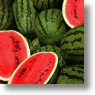 Ethanol Production to Get a Boost From Watermelons
