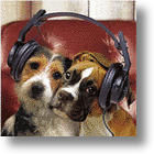 Dog Whisperers Are Out, Dog Listeners Are In