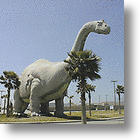 Worlds Largest Dinosaur Site Uncovered in China
