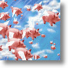 Swine Flu App Can Detect When Pigs Fly?