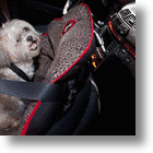 PupSaver Dog Car Seat Safe For Use In Front Seats