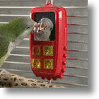 Jungle Talk,Talk 'n Play: Cell Phone Keeps Pet Birds Active And You In Stitches
