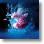 It&#039;s Okay to Spill This Paint - Underwater Paint Photography
