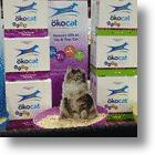Show Your Cats Some Respect With Okocat Natural Cat Litters: Review