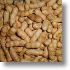 An End To Food Allergies? Well, Let's Start With Peanut Allergies