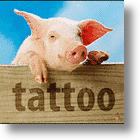 Moscow Art Gallery and Tattoed Pigs: Art Imitating Life?