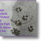 3 Best Products To Protect Your Dog's Feet On Snow And Ice