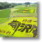 Newest Japanese Rice Field Art Sends Living Messages of Hope