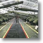 Russian Tank Museum: Tanks for The Memories