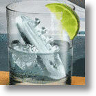 Gin and Titonic Ice-Cube Mold: A New Drinking Experience and Sinking Feeling