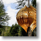 Yellow Treehouse: Unique Restaurant Pops-Up In A Redwood Tree!