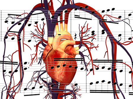 The human heart and music: Source: soundctrl.com