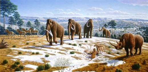 080401-science-mammoth-hlarge-830a
