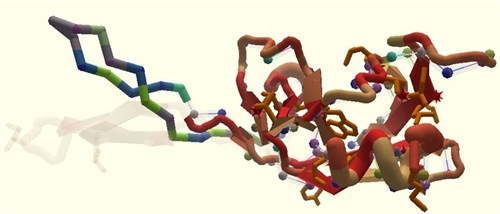 Screen shot of the Foldit game&#039;s virus enzyme pose: University of Washington via msnbc.com
