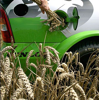 Biofuel Has Become More Popular, Thus Requiring A Solution For The Crude Glycerol Problem