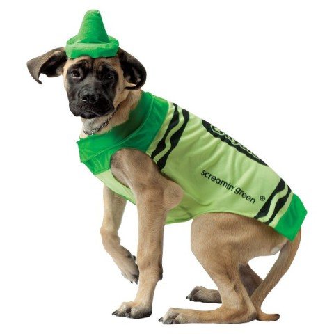 Crayola Green Crayon Dog Costume