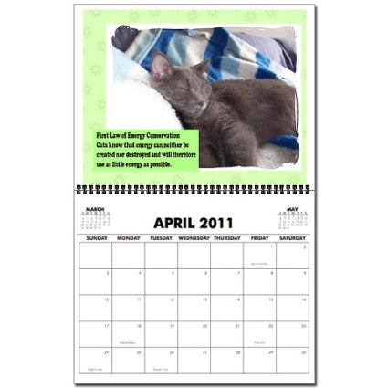 Cat Physics 2011 Wall Calendar