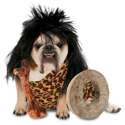 You have a bone to pick?  Well, it's not going to be mine!: Zelda Cave Dog Costume