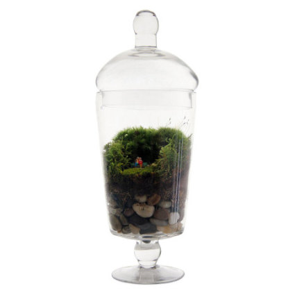 Grow Old With You Terrarium: image via uncommongoods.com