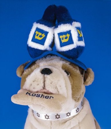 Double Dreidel Dog Hat Toy