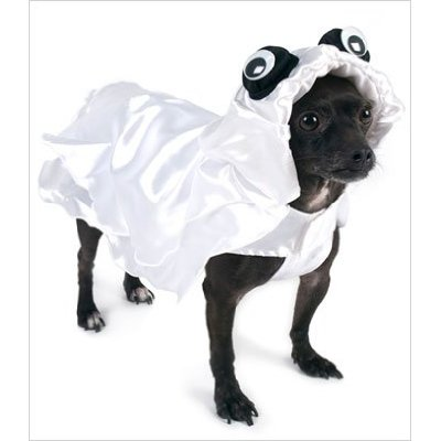 Suppose I meet a real ghost in this outfit?: Ghost Dog Costume