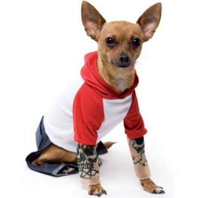 I'm not a biker; I just like tattoos.: Tattoo Dog Costume