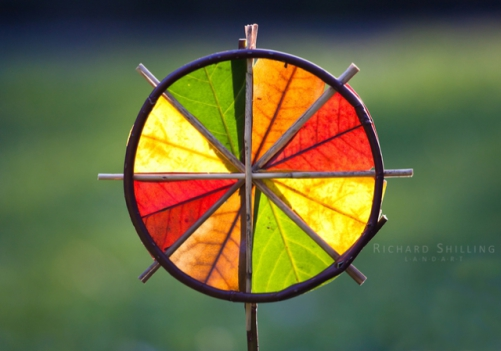 4 Color Sunwheel