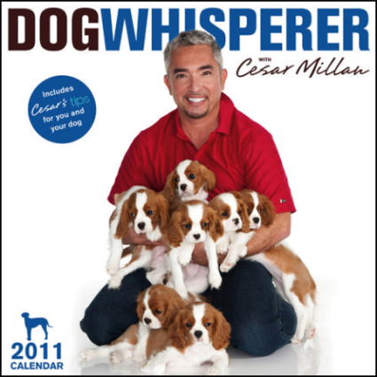 The Dog Whisperer 2011 Wall Calendar