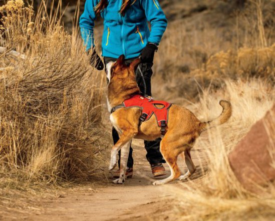 RuffWear Web Master Dog Harness: image via amazon.com