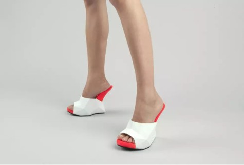 3-D Printed Float Shoe: Source: Design-Milk.com