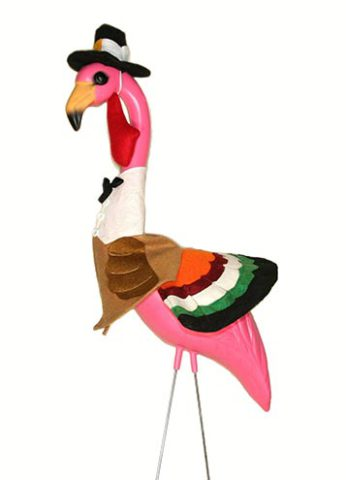 Flamingo Turkey