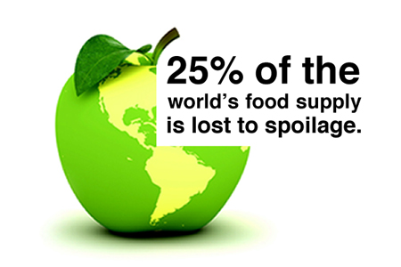 Food Waste Infographic: Source: Daily Concepts.com