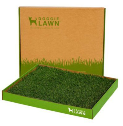 Doggie Lawn Potty In A Box