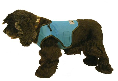 Grammercy Cool Vest For Dogs