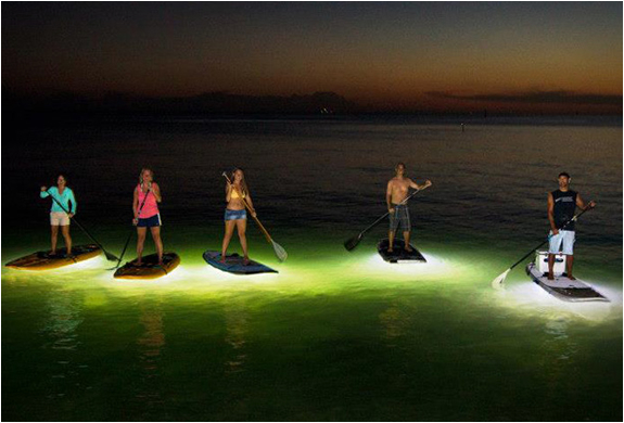 NightSUP LED Paddleboards