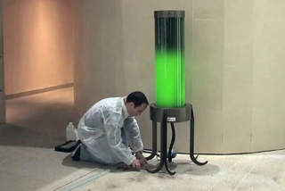 Microalgae Lamp: Image courtesy Pierre Calleja/YouTube