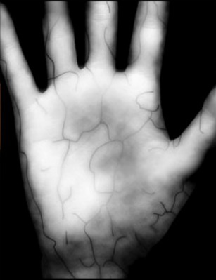 Veins are 100 times more unique than figner or thumb prints: image via computerworld.com