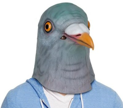 Creepy Masks: Pigeon for Halloween: WTF is up with the pigeon's eyes?