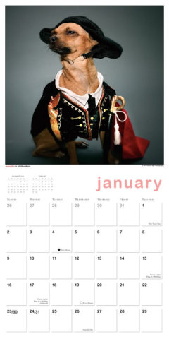 Indognito Canines in Costume 2011 Wall Calendar