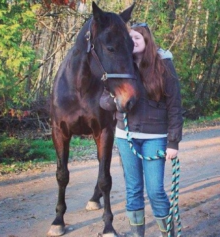 My rescued Standardbred