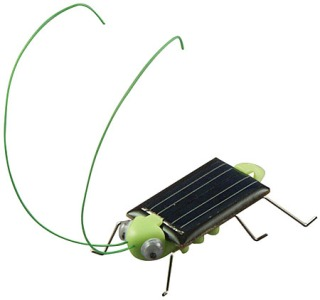 Solar Frightened Grasshopper