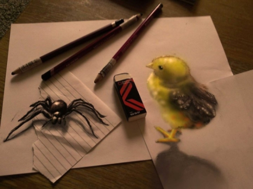 Spider and Chick