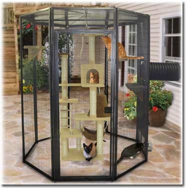 MysticKitty Outdoor Cat Houses For Indoor Adorable Cute Kitty