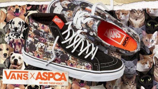 Vans ASPCA Shoes